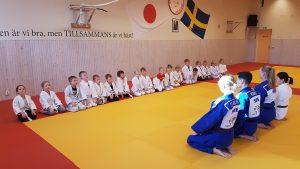 Staffanstorps judoklubb judolekis 2018